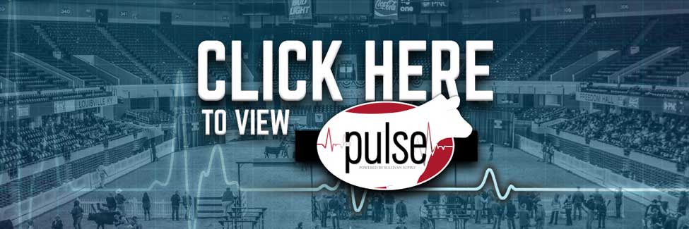 Click Here to View the Pulse Blog